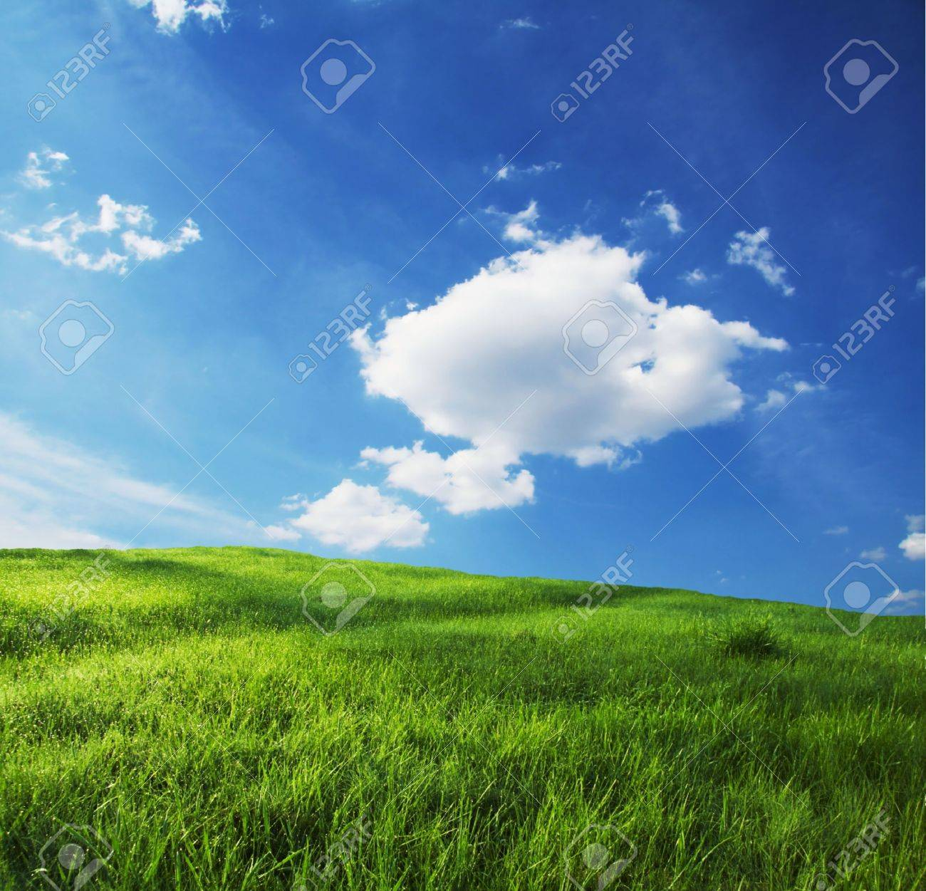 Green grassland and sky for background Stock Photo - 983444