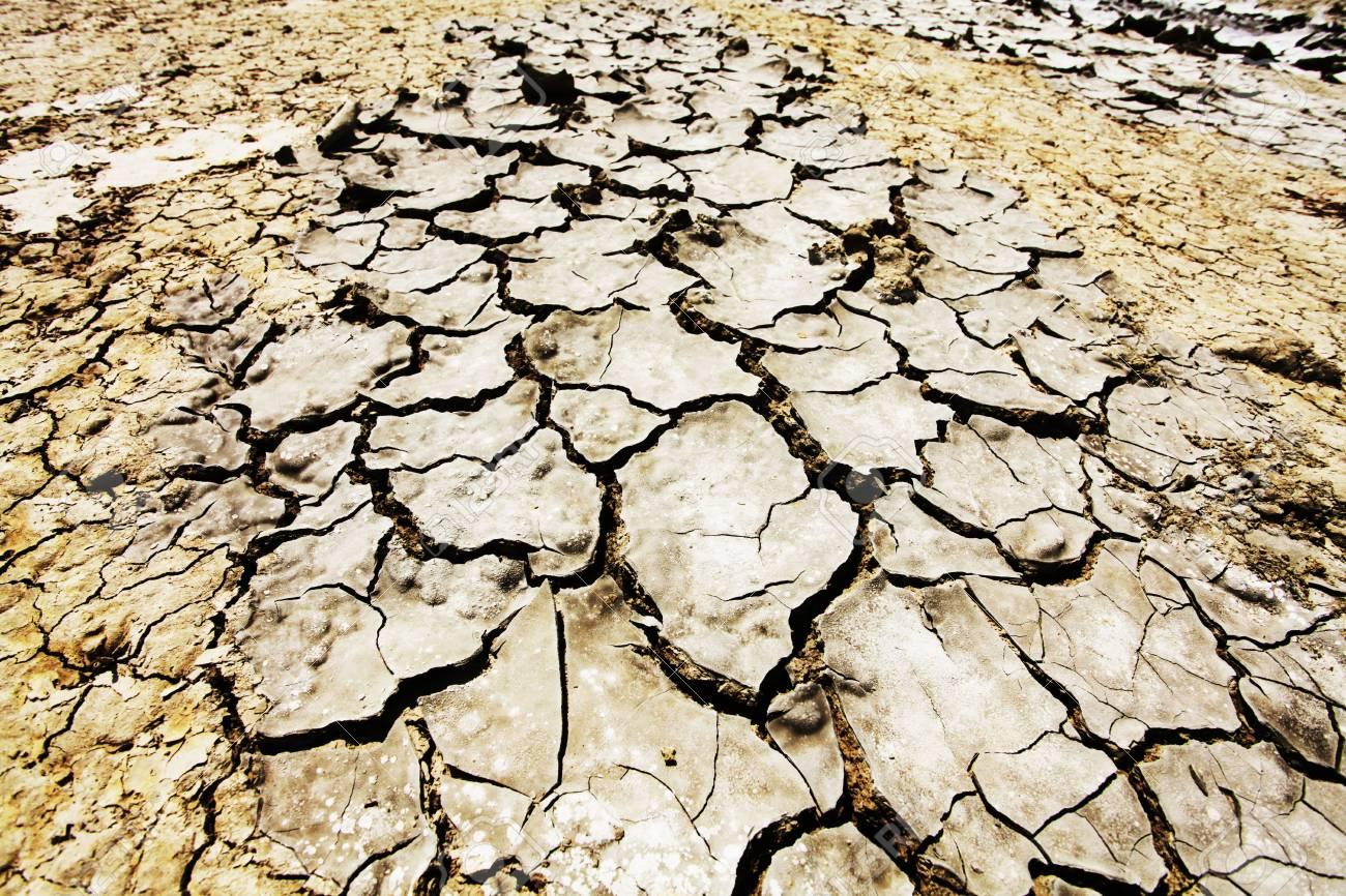 Drought land Stock Photo - 5362646