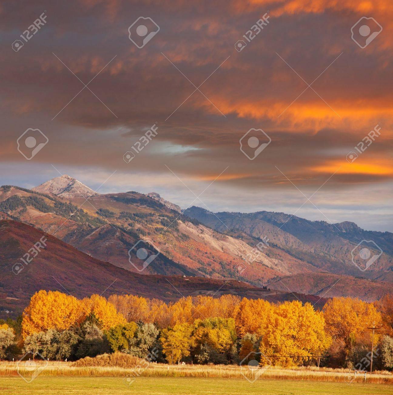 autumn scene Stock Photo - 11164715