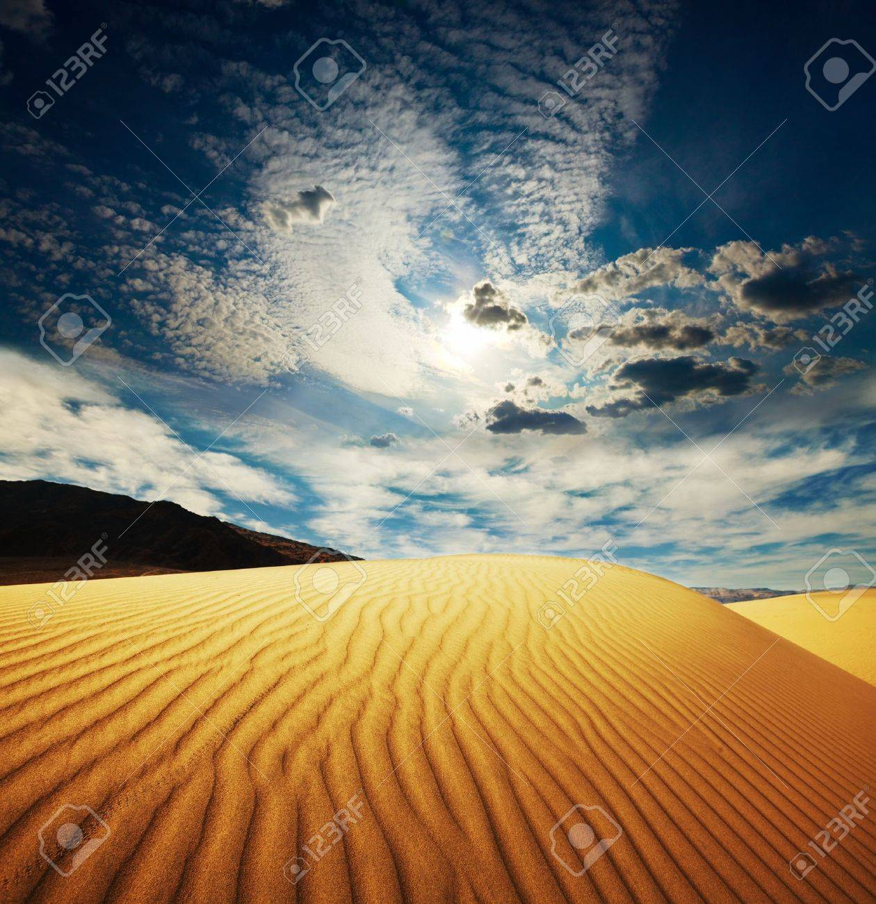 Sahara desert Stock Photo - 11305066