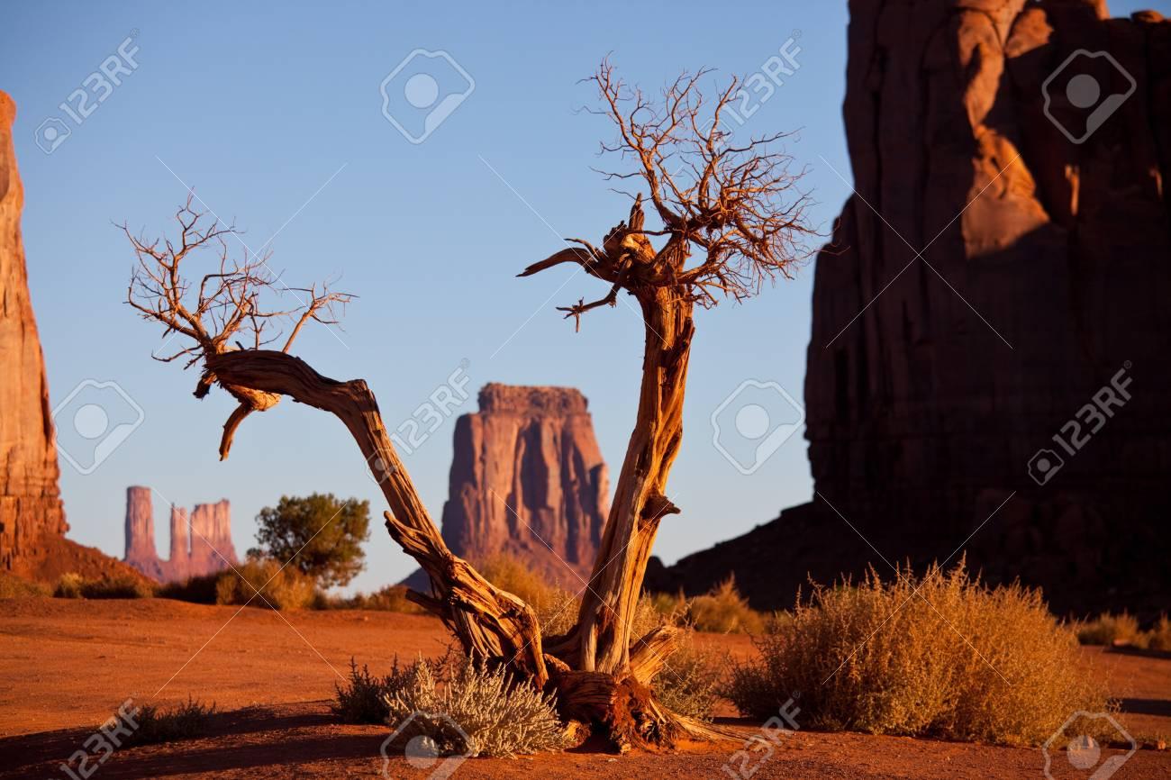Monument Valley,Utah,USA Stock Photo - 12615409