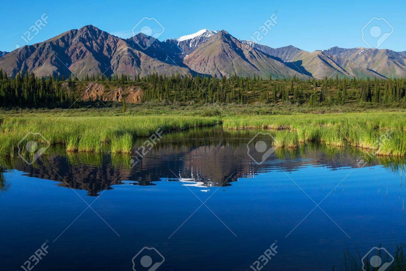 Serenity lake in tundra on Alaska Stock Photo - 17480406