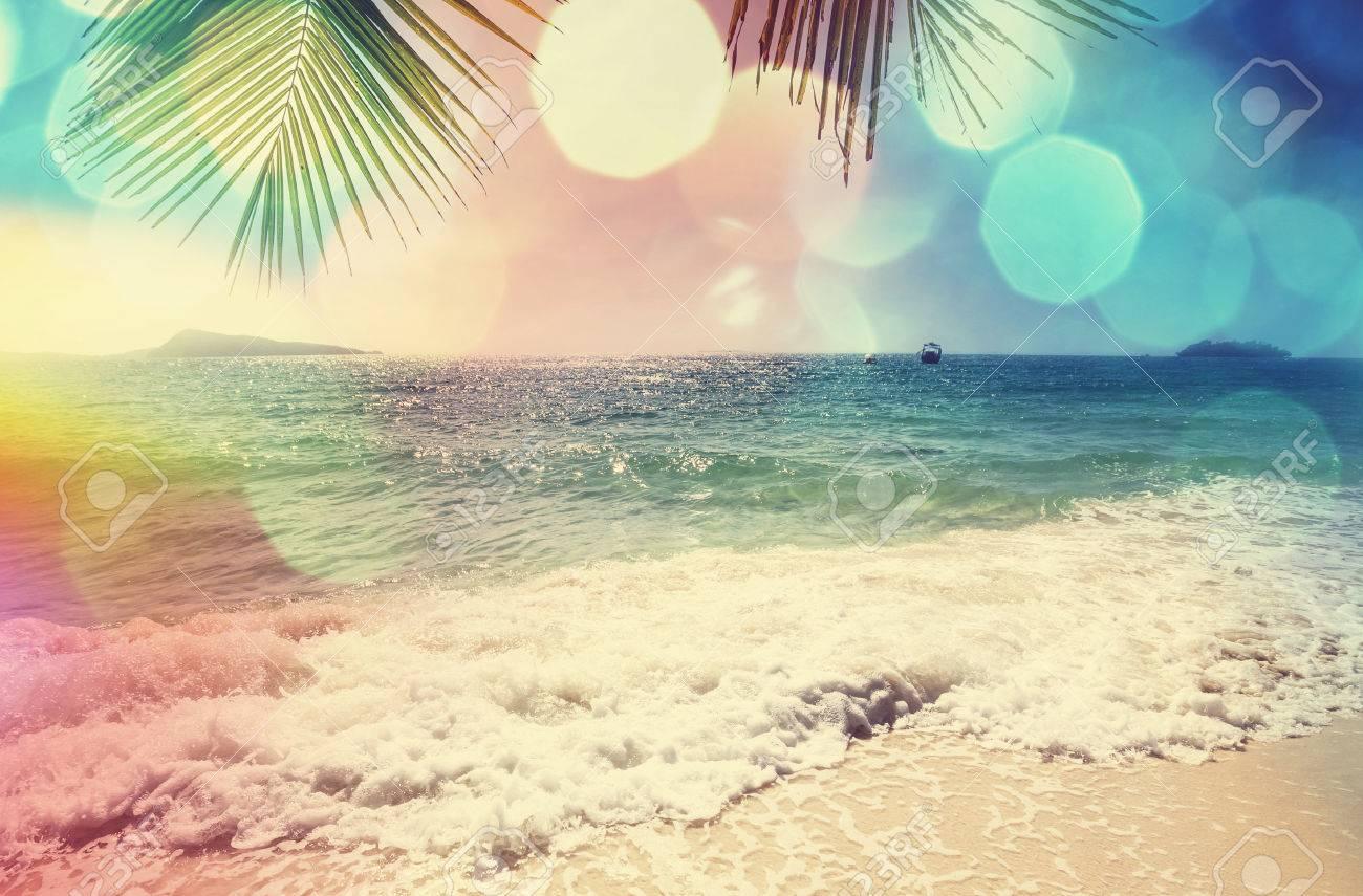 Serenity tropical beach Stock Photo - 40707553