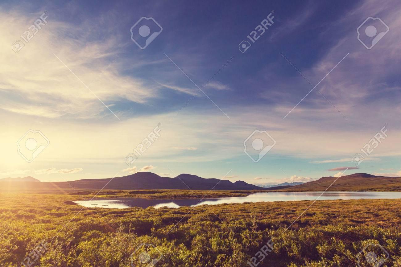 Landscapes on Denali highway, Alaska. Stock Photo - 45483722