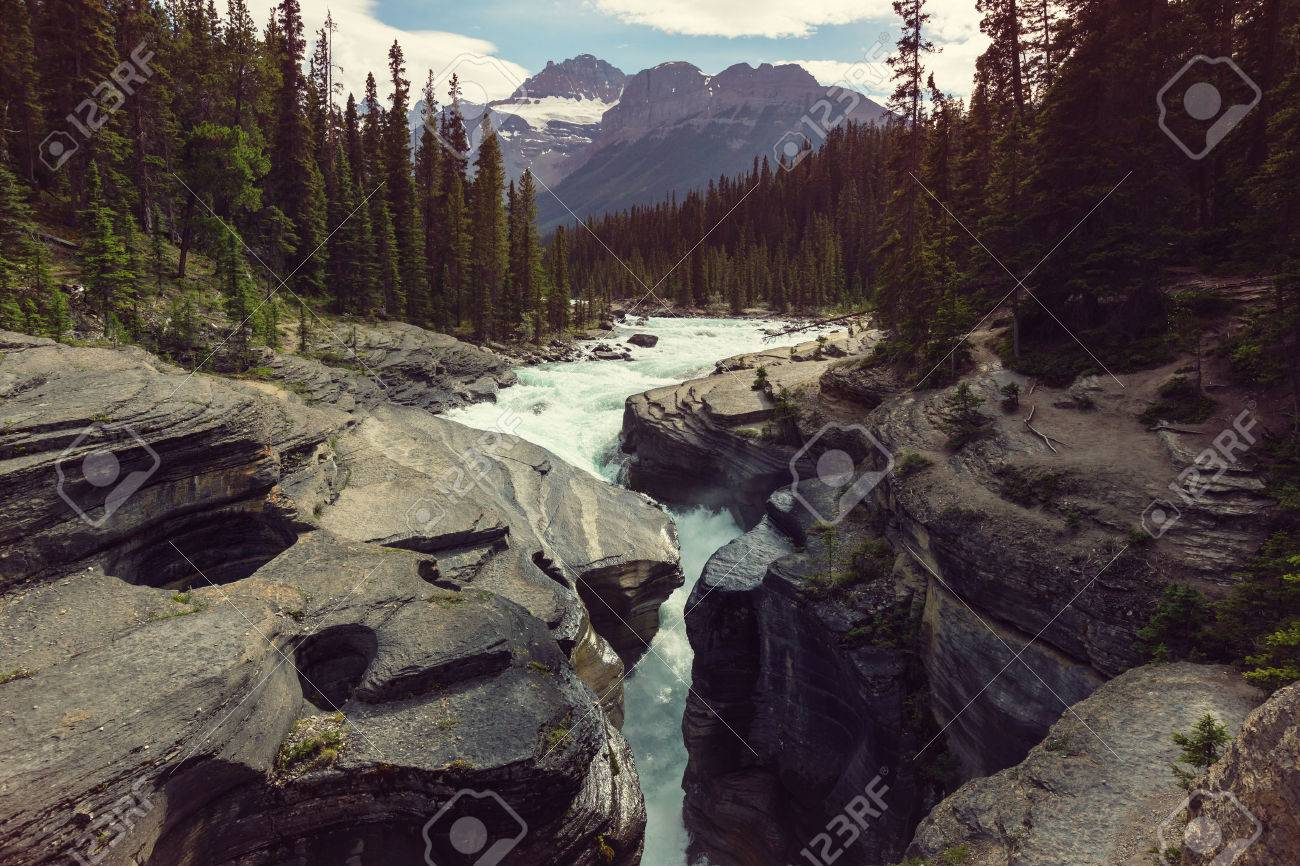 Scenic views of the Athabasca River, Jasper National Park, Alberta, Canada Stock Photo - 51529630