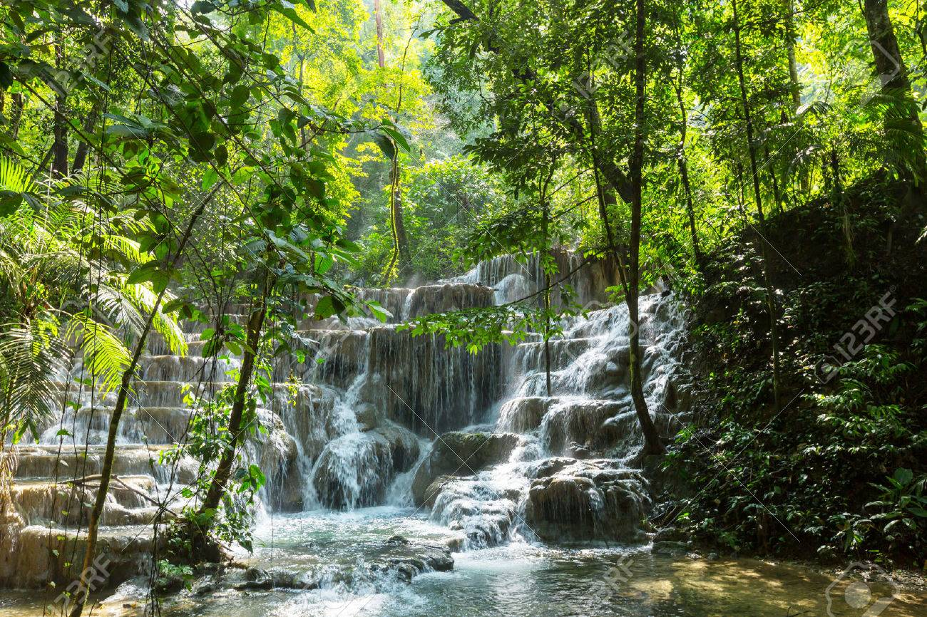 Waterfall in jungle, Mexico Stock Photo - 71306803