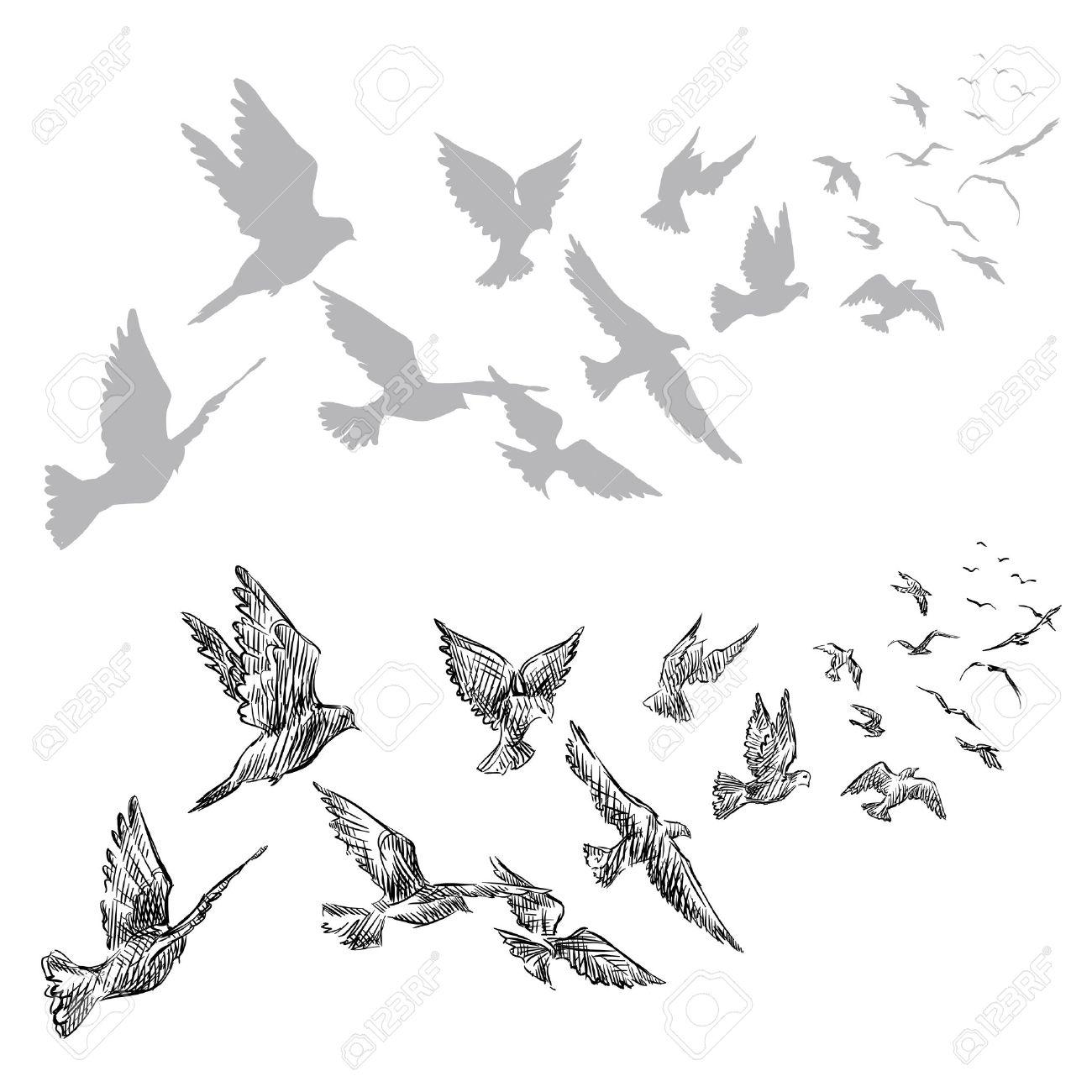 Palomas Volando Dibujado A Mano Ilustración Vectorial