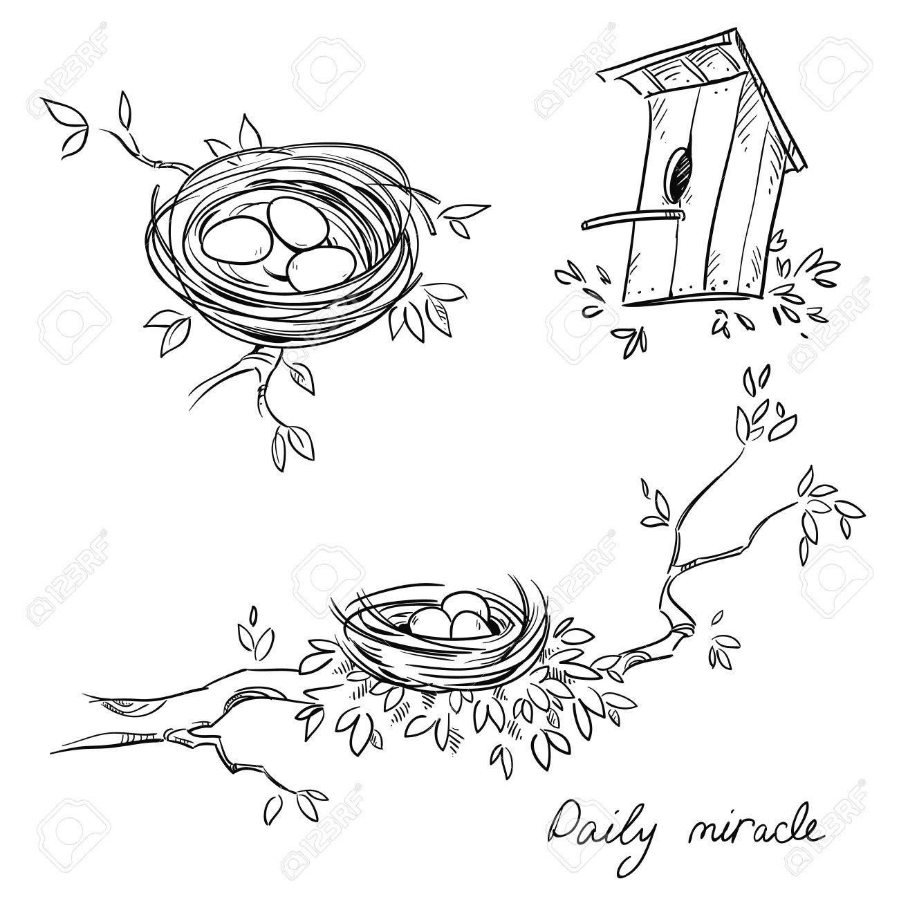 Hand drawn nests and a birdhouse, line drawing - 57880418