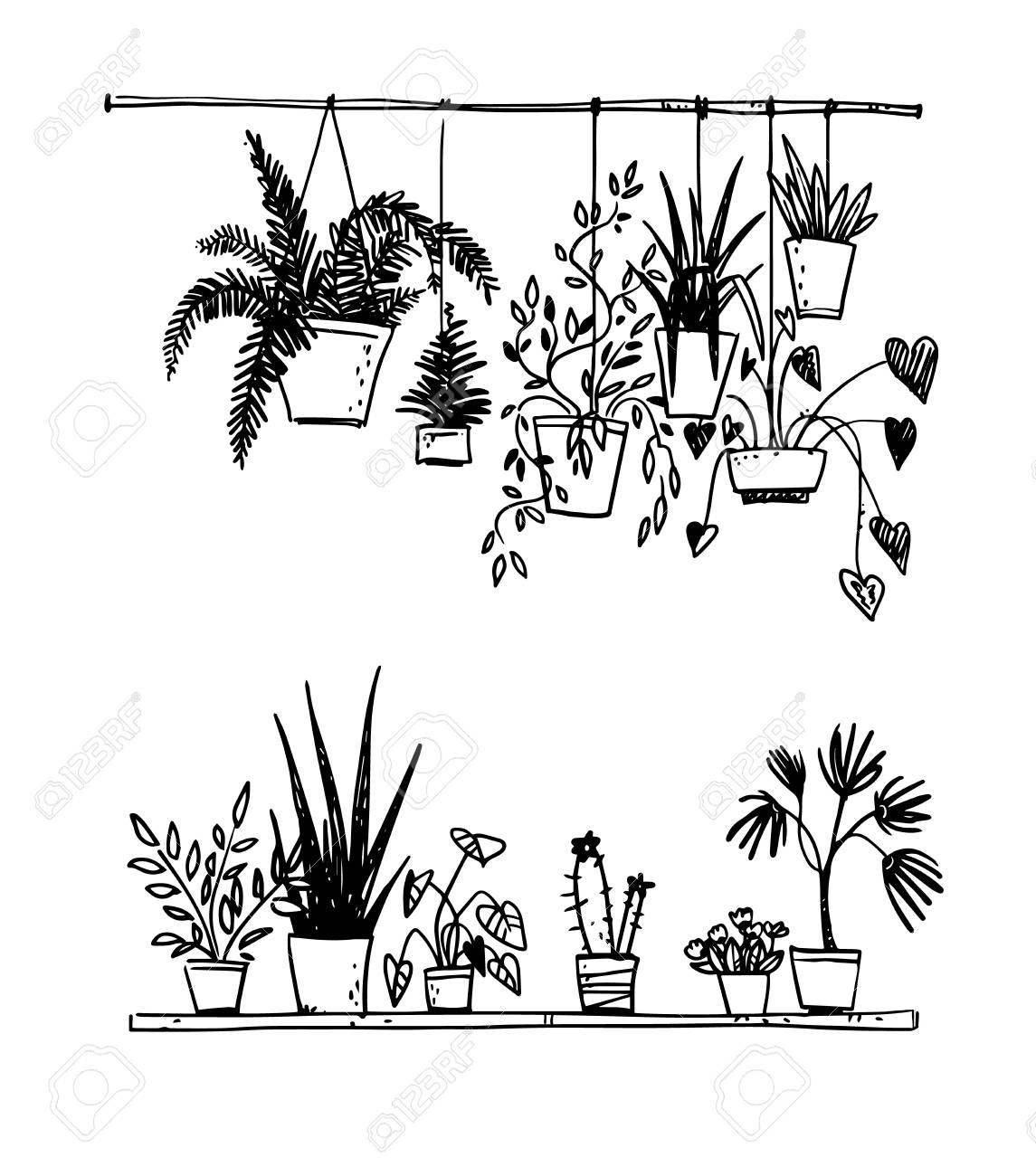 Set of potted house plants - 112651398