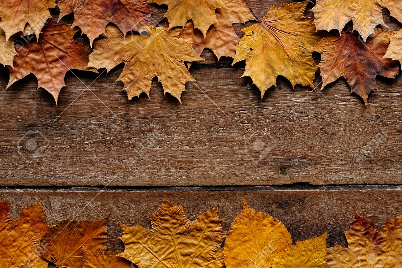 Wallpaper For September 1 Autumn Leaves On Wooden Background Stock Photo Picture And Royalty Free Image Image 126279485