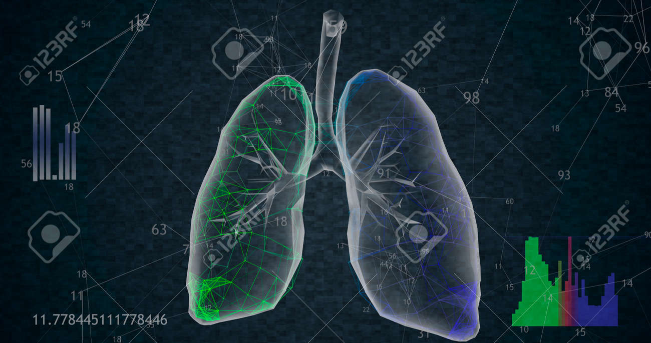 Rotating 360 low polygonal lungs 3D model on black background with animated increasing numbers and diagrams. 3D illustration - 165178064