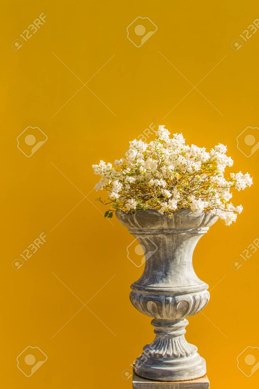 Beautiful Vintage Flower Pot On The Yellow Brick Wall Background ...
