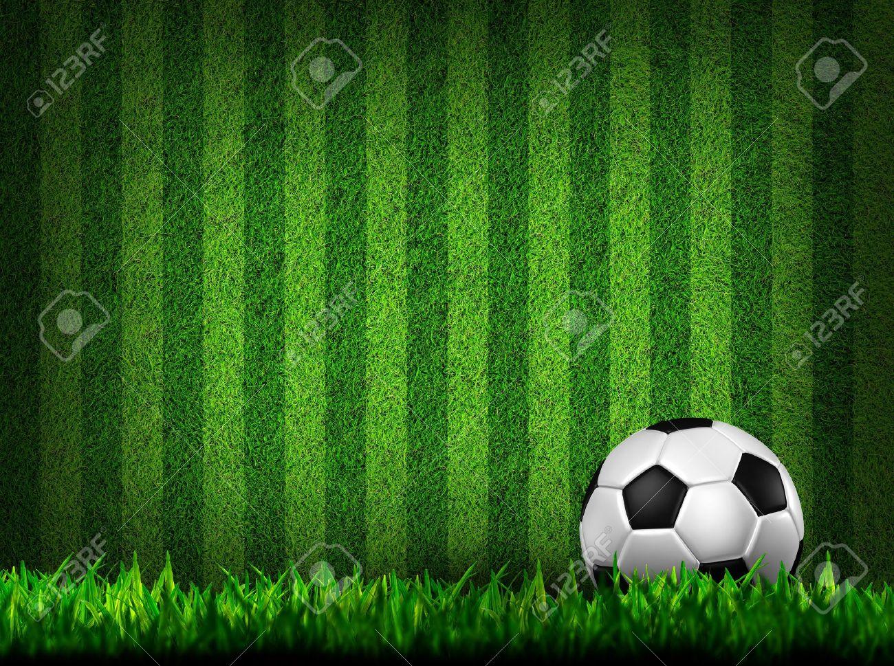 soccer football on grass field Stock Photo - 10090190