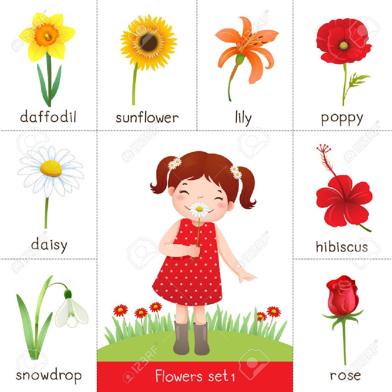 Flower cartoon stock photos royalty free flower cartoon images illustration of printable flash card for flowers and little girl smelling flower izmirmasajfo