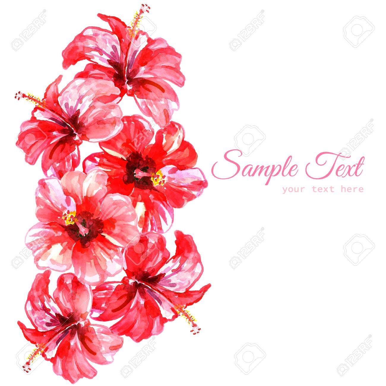 Frame From Red Watercolor Hibiscus Flowers. Illustration Isolated ...