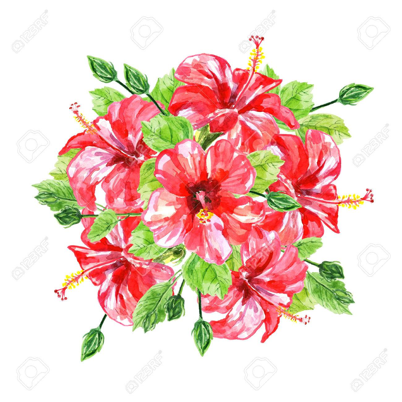 Bouquet From Red Watercolor Hibiscus Flowers Illustration Isolated