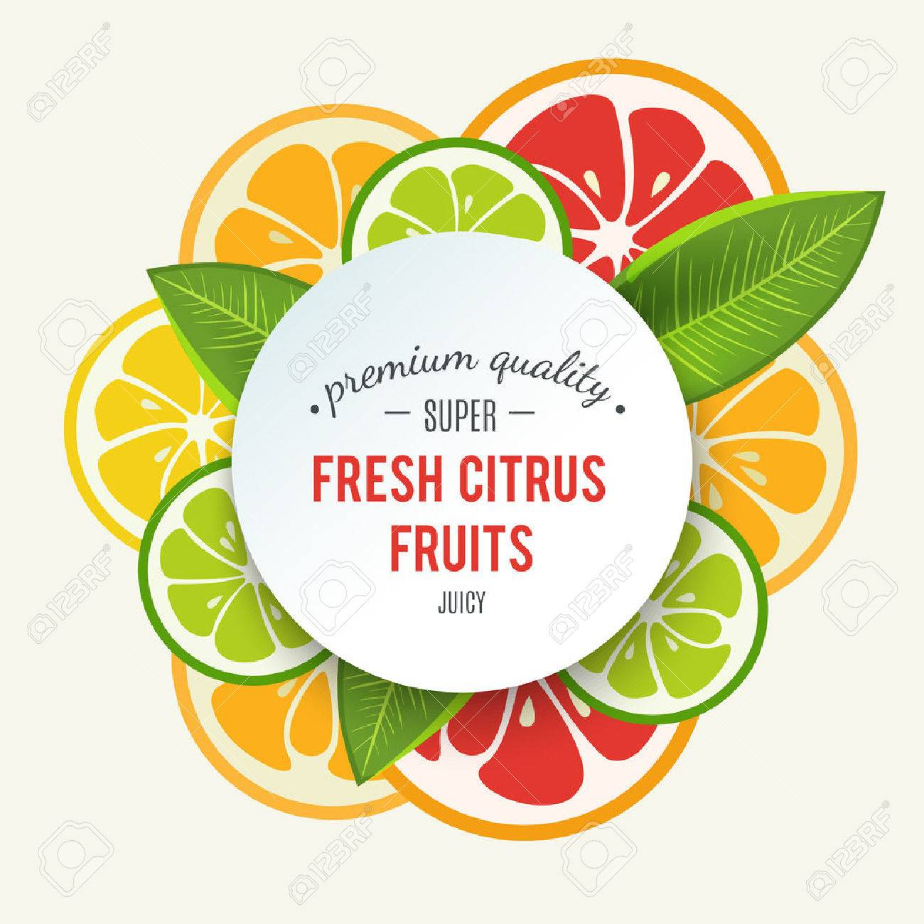 Banner with stylized citrus fruit and splashes. Grapefruit, lime, lemon and orange. Citrus mix isolated on white background can be used for cafe menu design. Bright stylish juicy icon design. Vector - 51849871