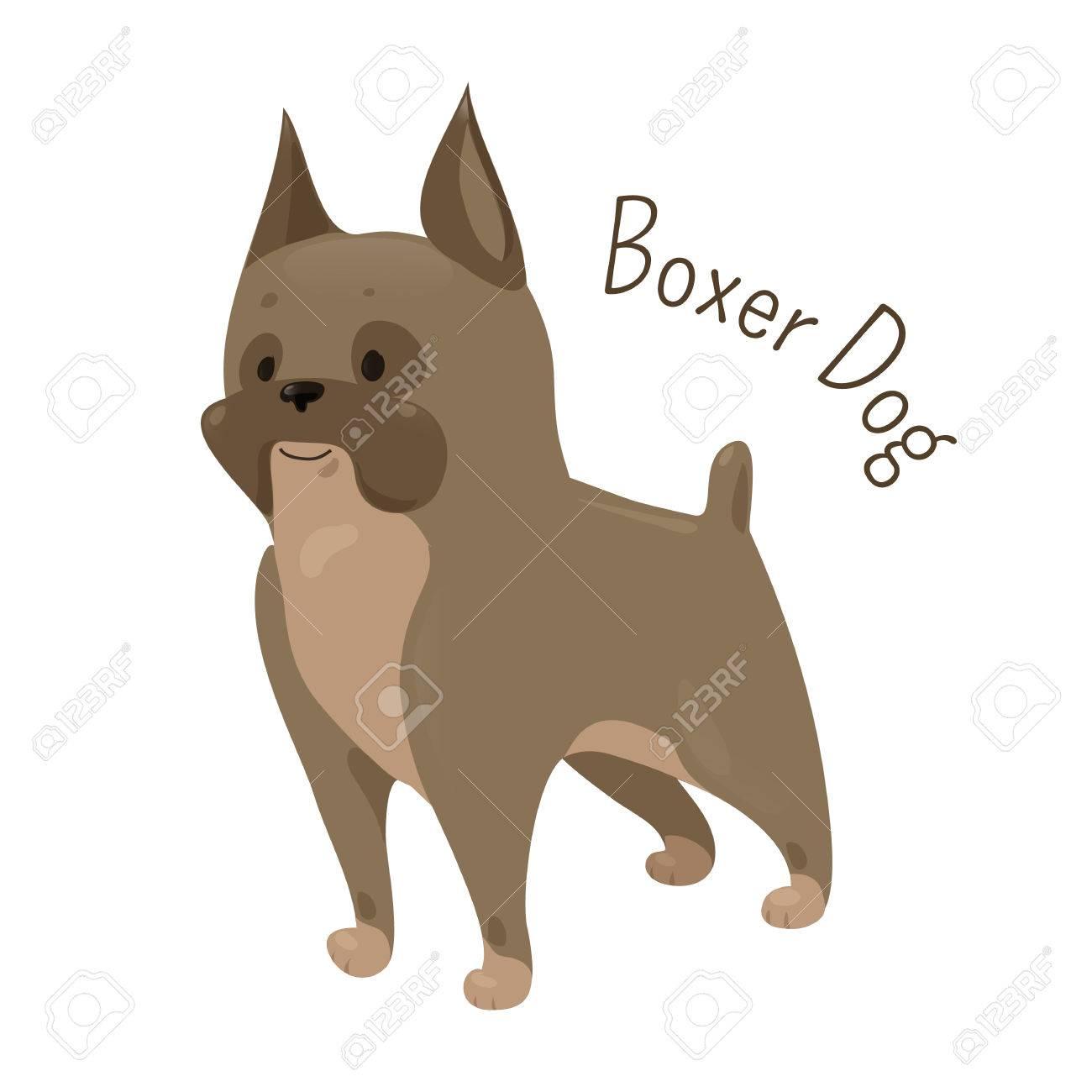 Vettoriale cane boxer isolato su sfondo bianco il pelo è liscio