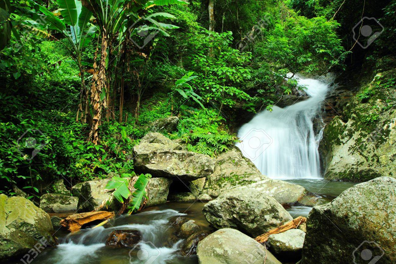 Waterfall in deep forest at national park in thailand Stock Photo - 15362443