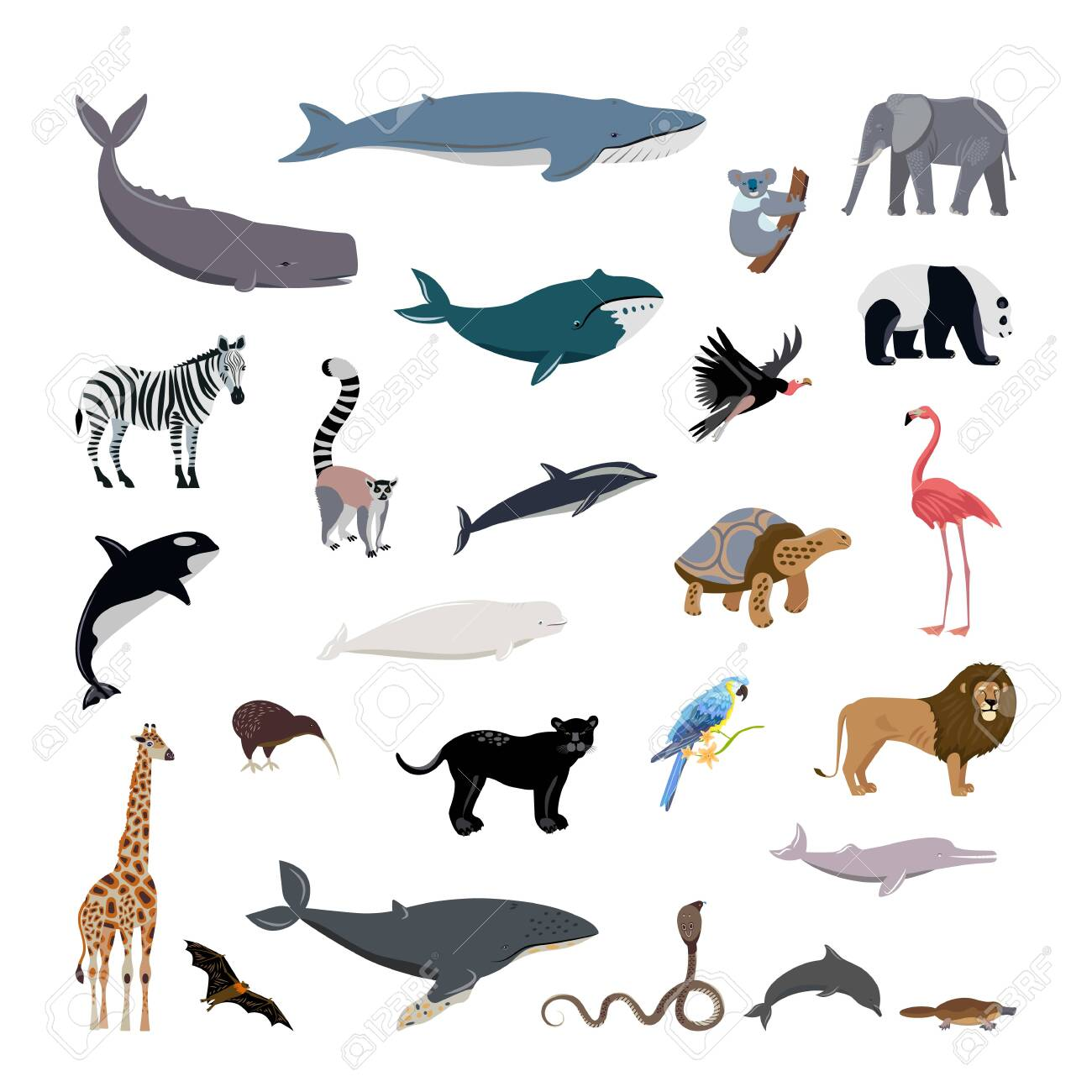 Big Set Cartoon Style Icons Of Different Animals Birds Whales