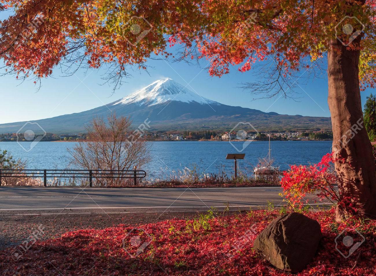 Fuji in Japan - 50040926