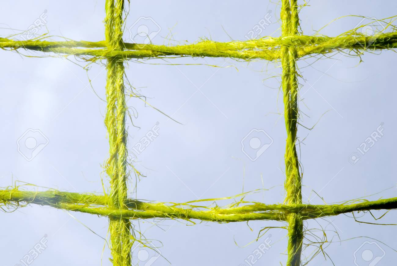 Close-up of a grid cell coarse linen. Stock Photo - 19524269