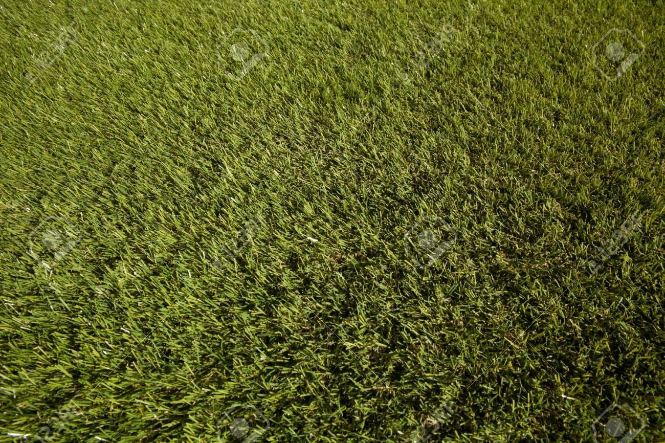 fake grass texture. Fake Grass Texture Stock Photo - 17343591