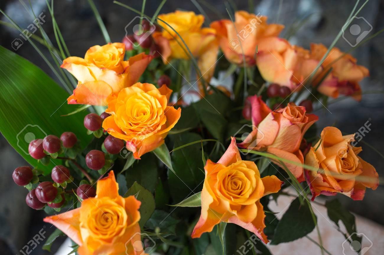 Une Rose Multicolore Est Une Fleur Vivace Du Genre Rosa Dans Les