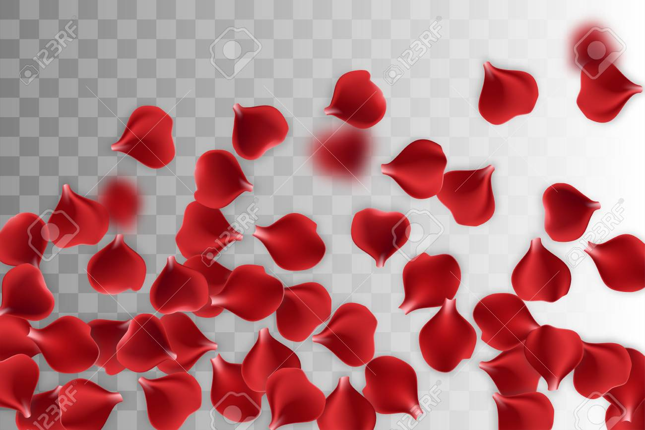 Random Falling Petals Isolated Greeting Frame Red Rose Petal