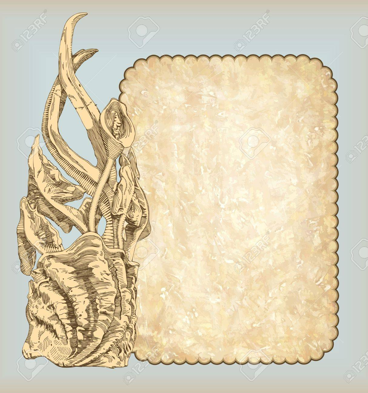 hand draw sketch vintage frame design with blank space for your text Stock Vector - 11638856