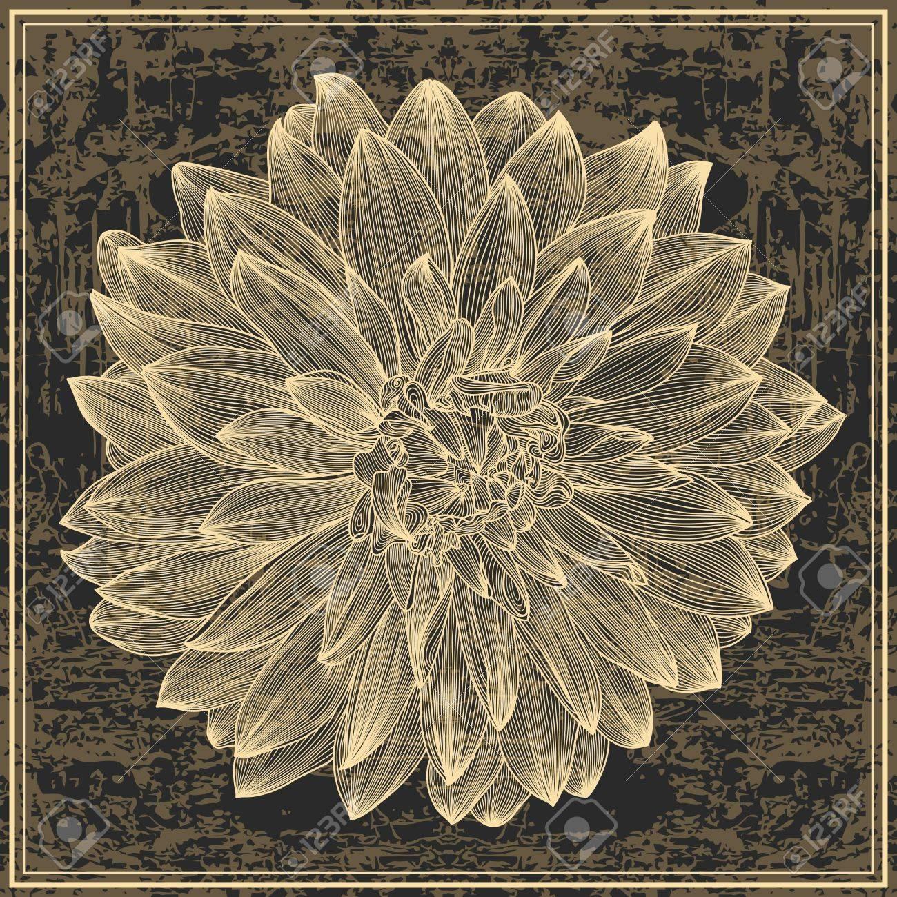 dessin de fleur de dahlia sur fond grunge. Élément à votre style