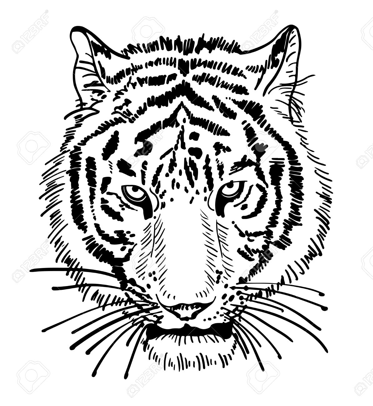 Illustration De Portrait De Visage De Tigre Silhouette Dessin