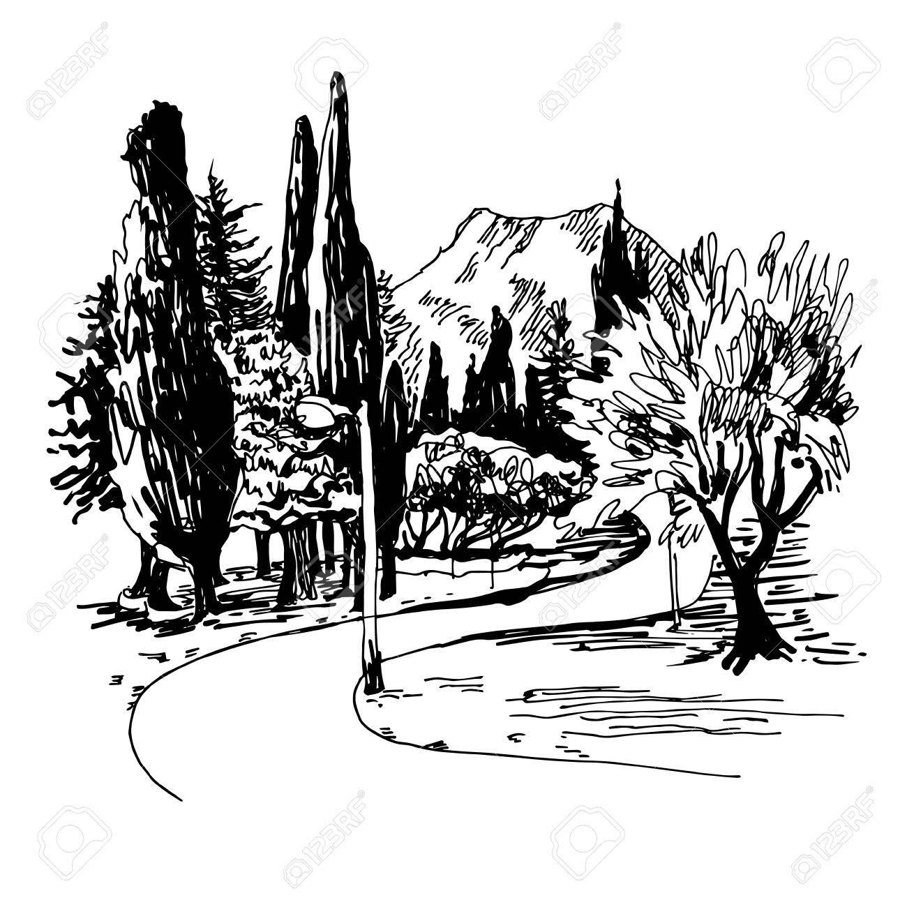 Dibujo Blanco Y Negro Del Parque De Vista Callejón Con árboles De