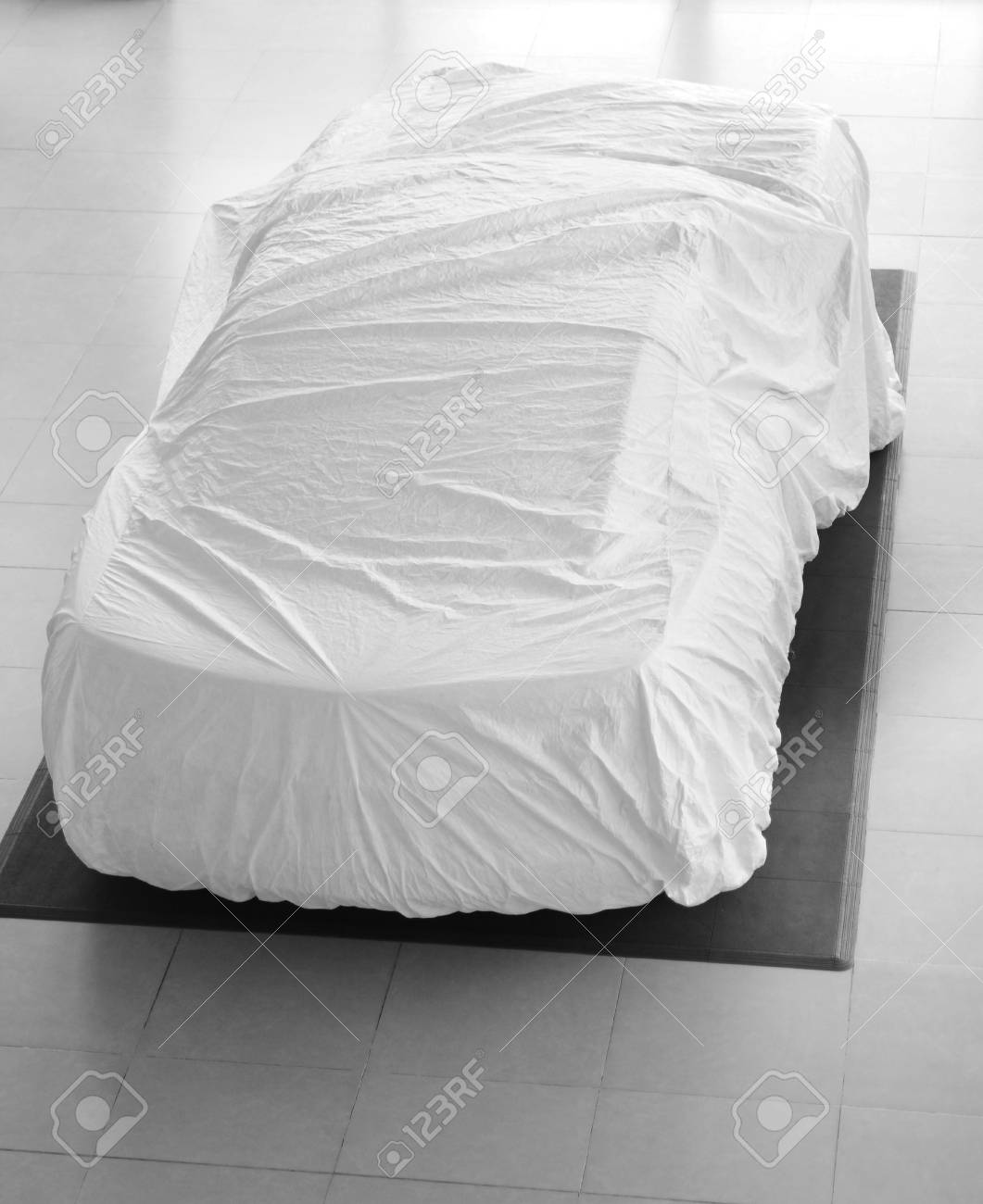 Car cover. Stock Photo - 8572511