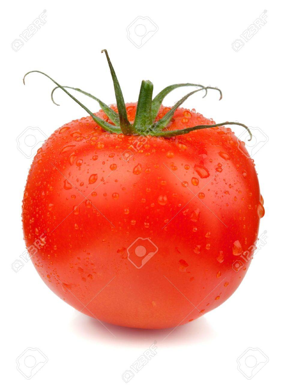 Fresh red tomato with water drops. Isolated on white background Stock Photo - 8169632