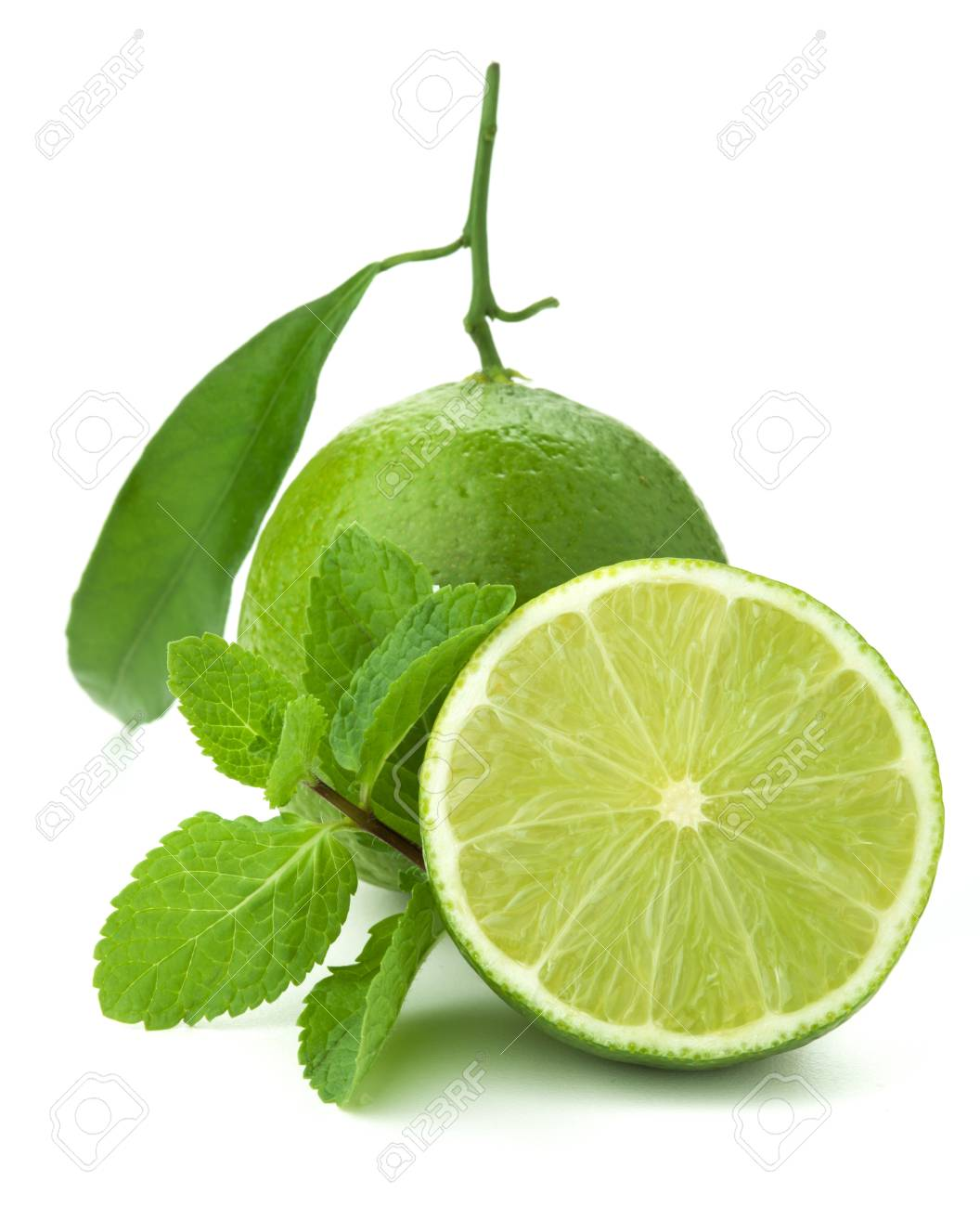 Ripe lime and mint. Isolated on white Stock Photo - 8445517
