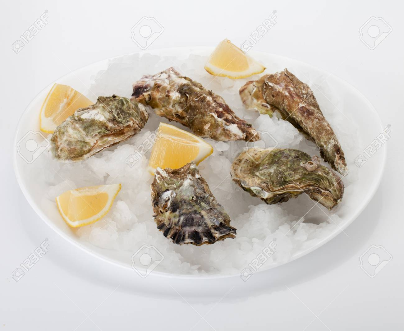 Oyster with lemon on ice Stock Photo - 8801760