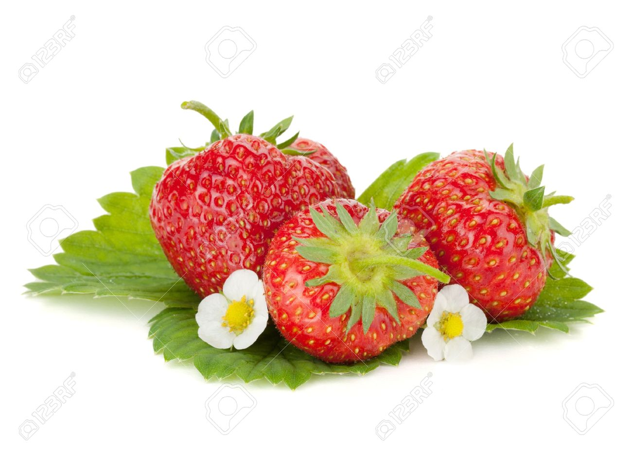 Three strawberry fruits with flowers and green leaves. Isolated on white background Stock Photo - 9960761