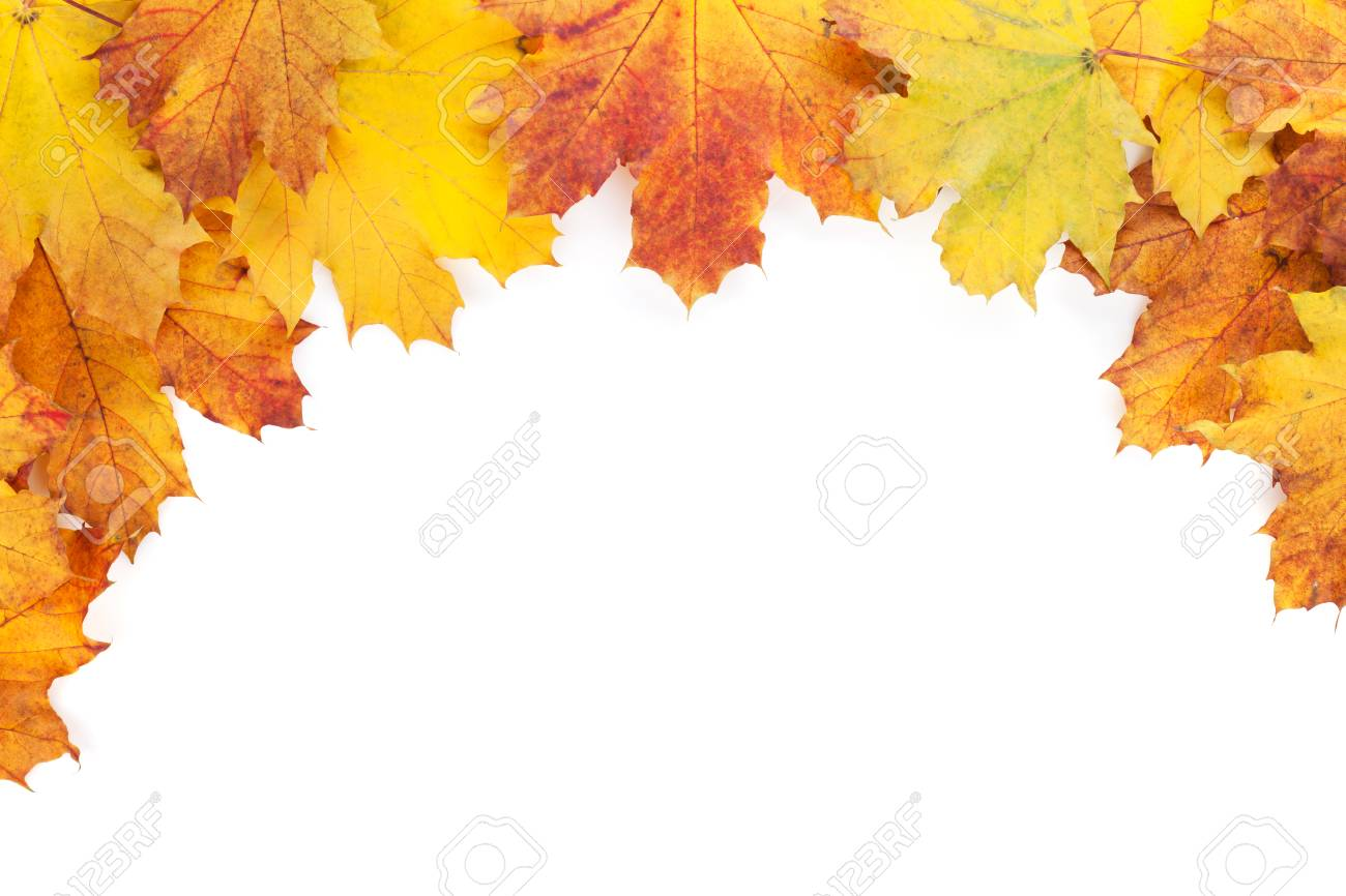 Colorful Autumn Maple Leaves Frame. Isolated On White Background ...