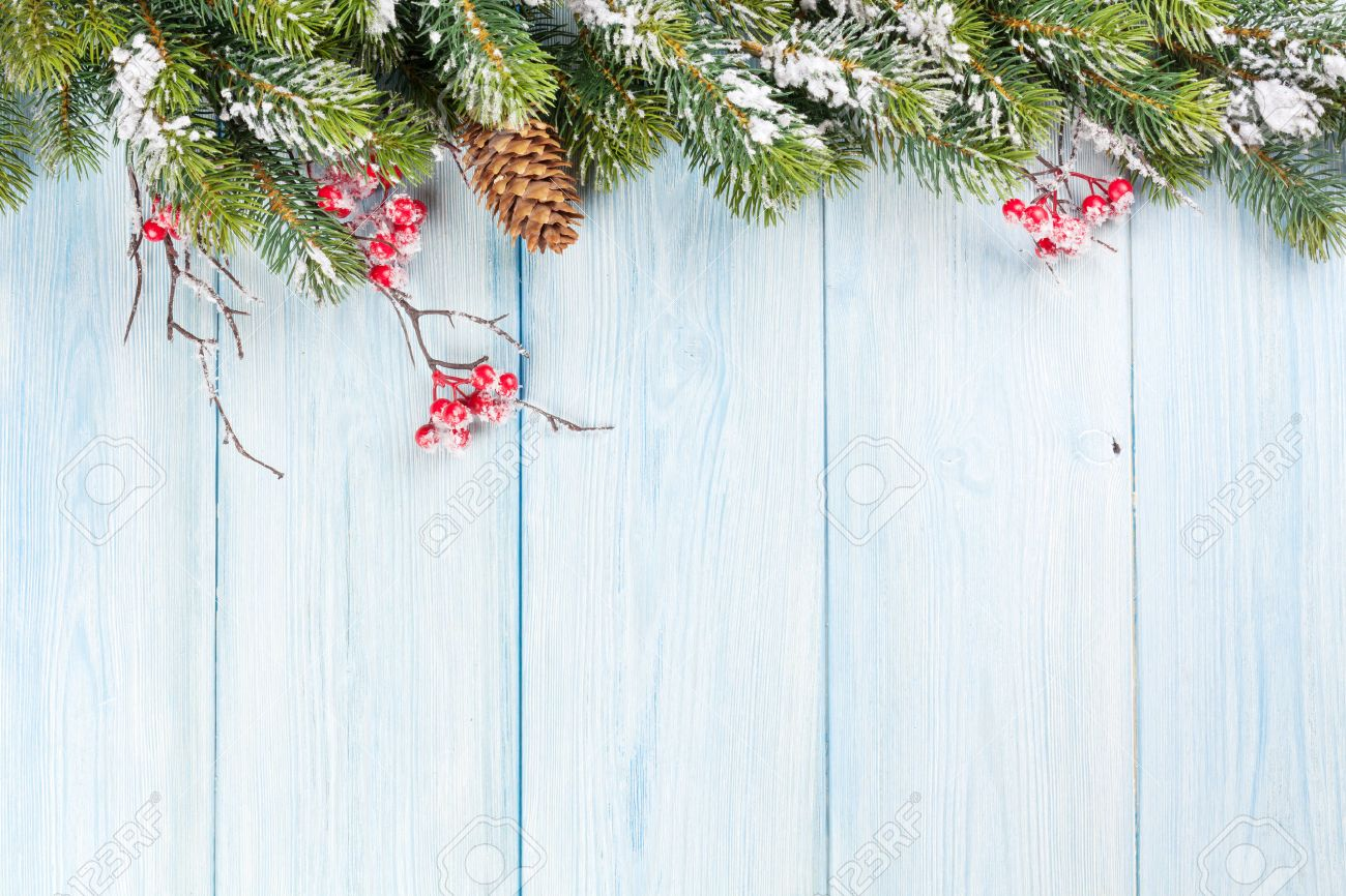 Christmas Wood Background.Christmas Wooden Background With Snow Fir Tree And Holly Berry
