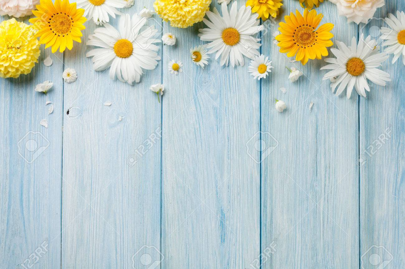 Garden flowers over blue wooden table background. Backdrop with copy space Standard-Bild - 60454949