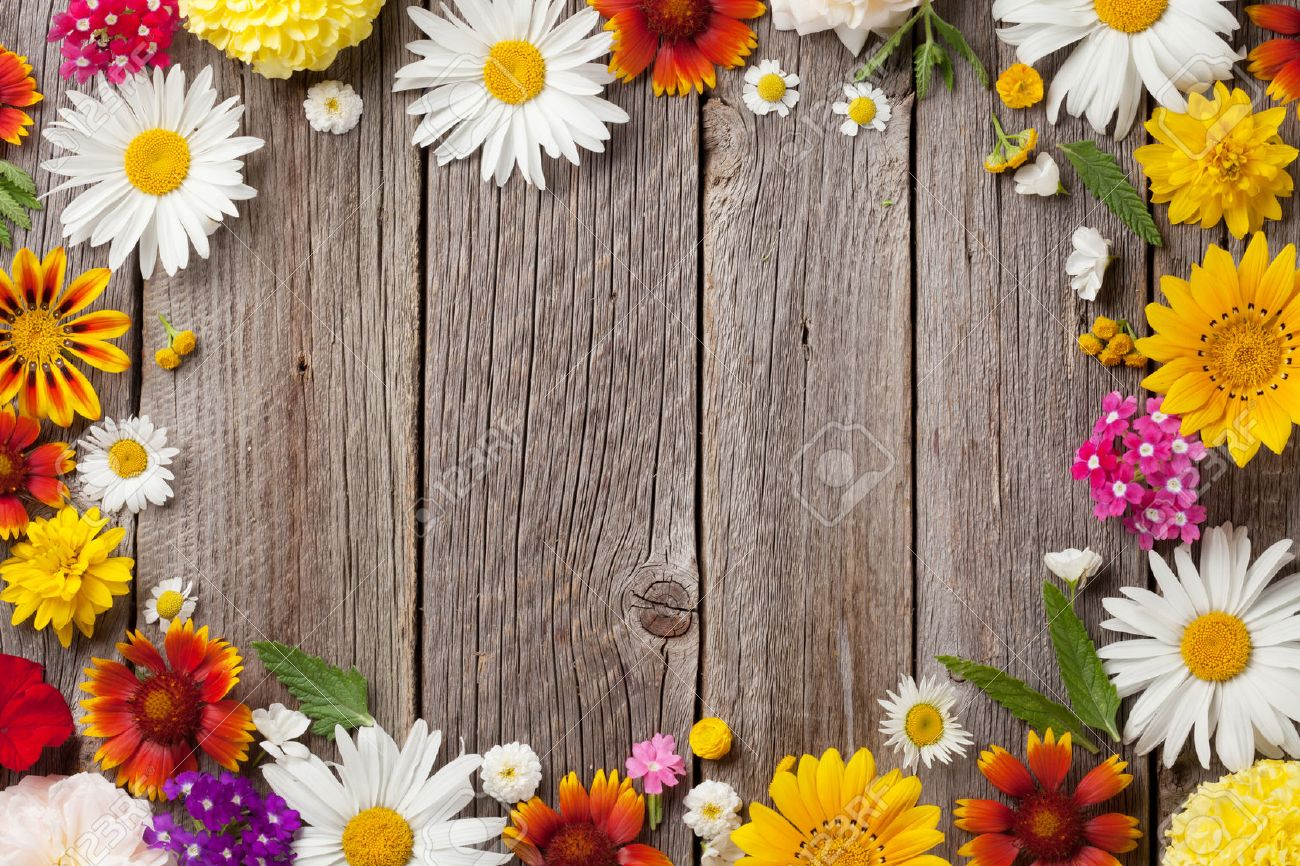 Garden Flowers Over Wooden Table Background. Backdrop With Copy Space Stock  Photo   60454961
