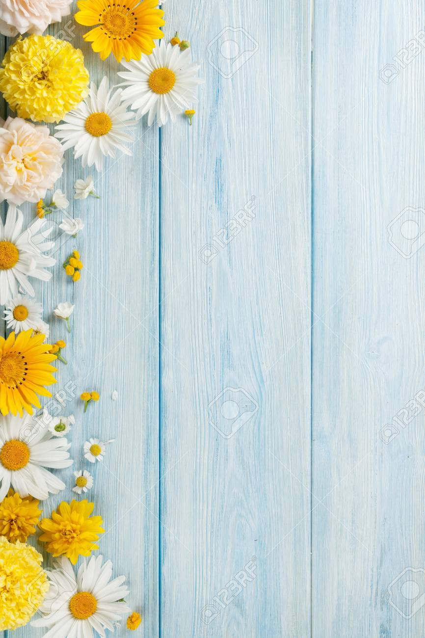 Garden flowers over blue wooden table background. Backdrop with copy space Standard-Bild - 62201090