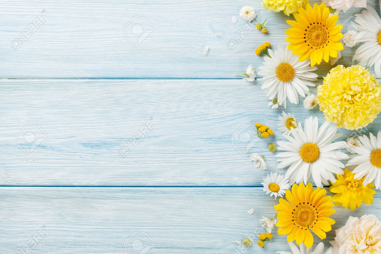 Garden flowers over blue wooden table background. Backdrop with copy space Standard-Bild - 68840912