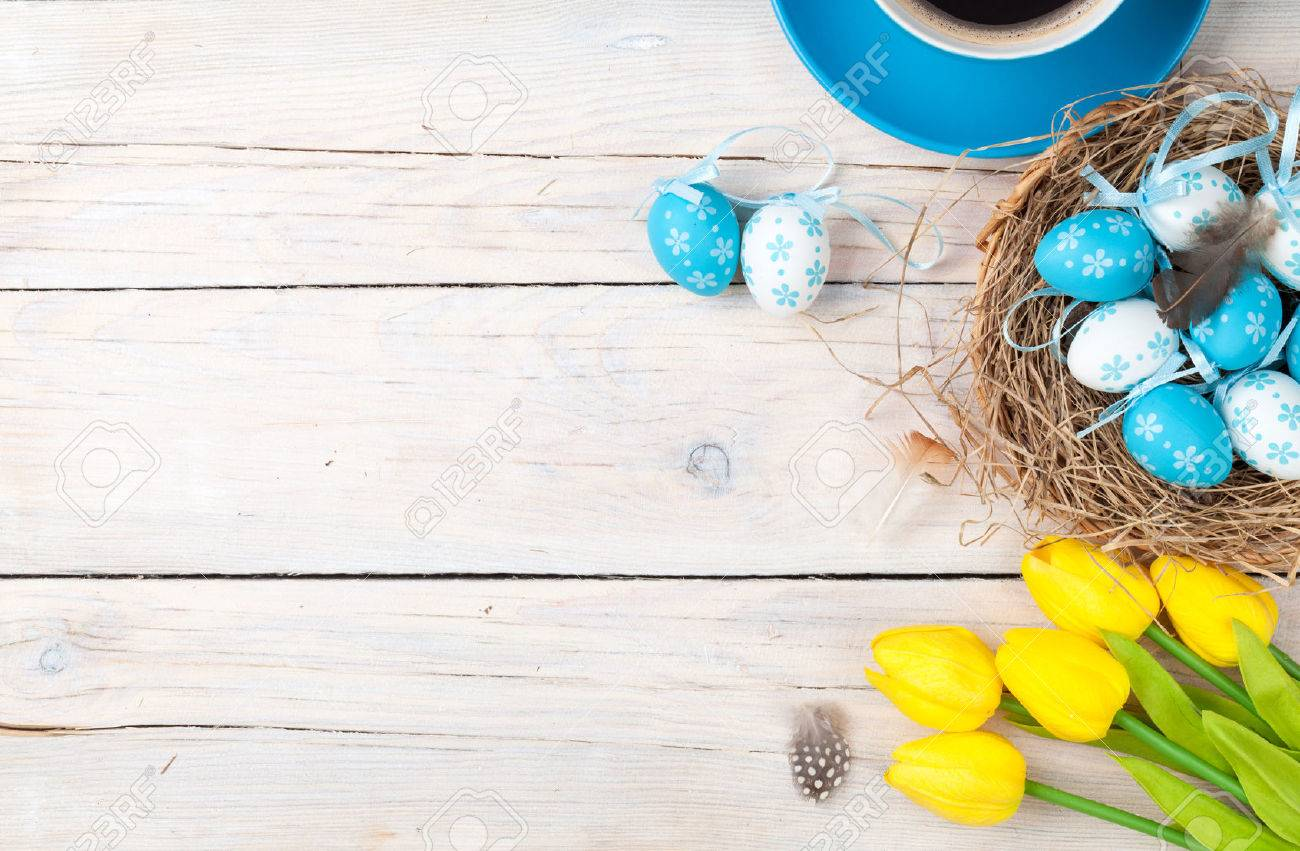 Easter background with blue and white eggs in nest, yellow tulips and coffee cup over white wood. Top view with copy space Standard-Bild - 73144959