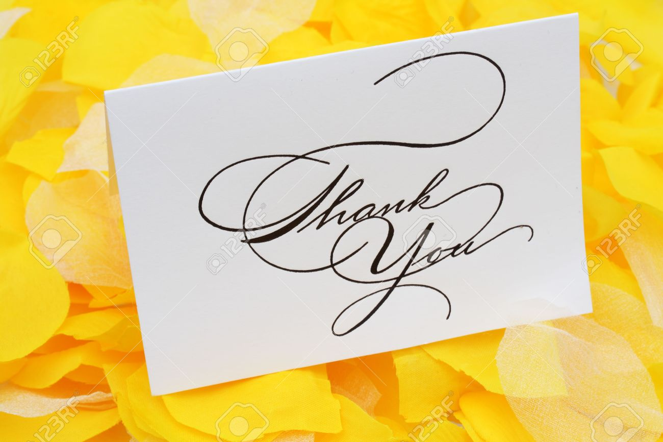 Thank you card on yellow flower petals Stock Photo - 1849630