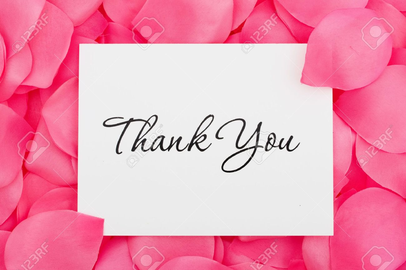 A Thank You Card Sitting On A Pink Flower Petal Background Thank