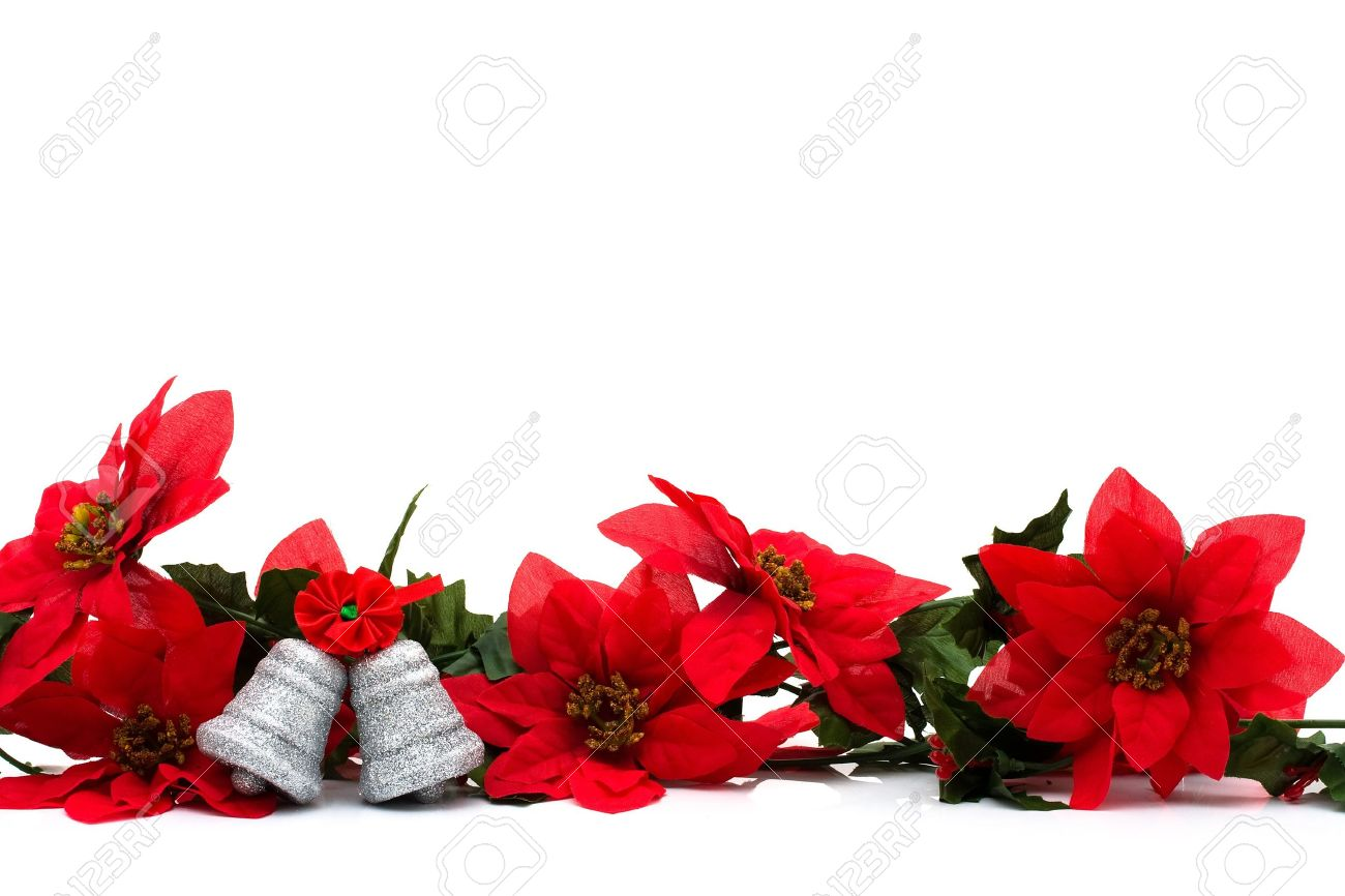 poinsettia border on a white background with silver bells