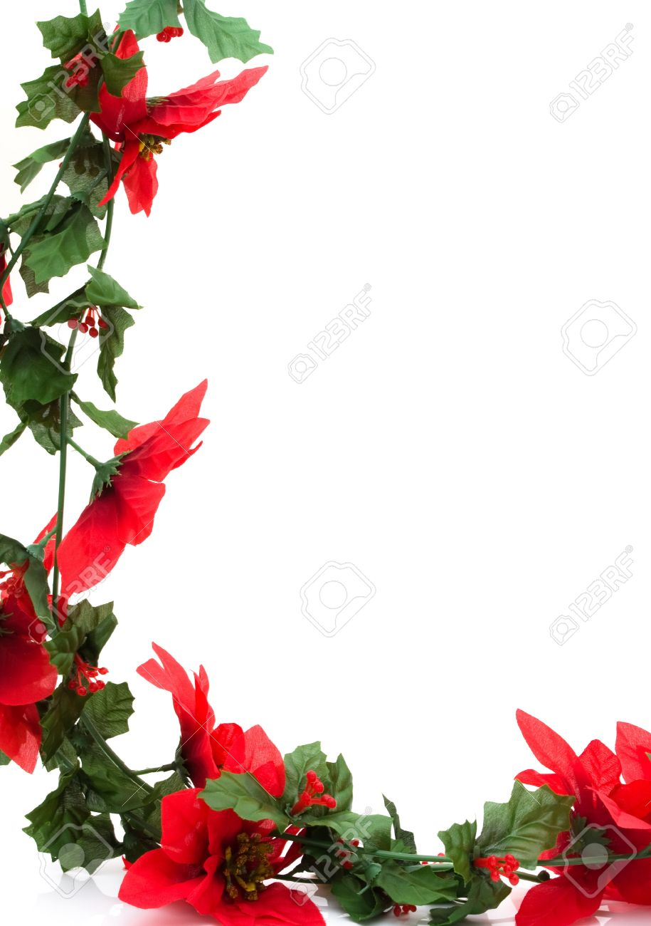 poinsettia flowers making a border with white background christmas border stock photo 8366466