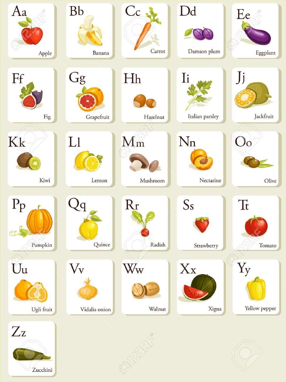 Fruits and vegetables  alphabet cards , illustration Stock Vector - 8669157